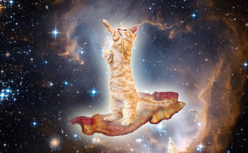 Baconkatten i rymden